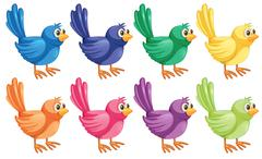 Eight colorful birds Piirros