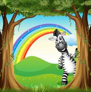 A zebra near the trees and a rainbow in the sky Piirros