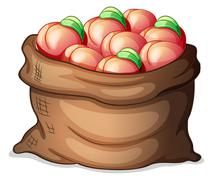 A sack of apples Stock Illustration