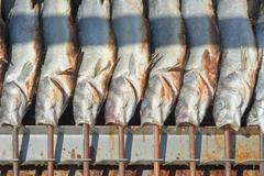 Stock Photo of grilled fish on a stick