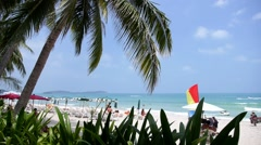 Tropical Paradise Beach - Palm Tree, White Sand and the Sea. Stock Footage