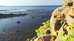Dolly shot of paradise Sea coast with rocks and cliffs. Stock Footage