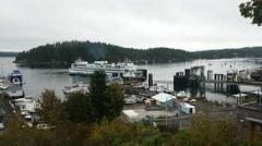 Friday harbor, san juan island, san juan islands, puget sound, washington, st Stock Footage