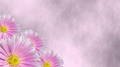 Seamless violet floral background loop Stock Footage