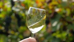 Hand shaking a glass half-filled with white wine slow motion Stock Footage