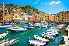 camogli marina harbor, boats and typical colorful houses. ligury, italy - stock photo