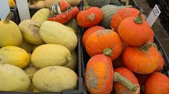 Winter Harvest: Spaghetti and Amber Cup Squash. Stock Photos