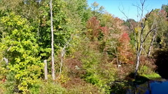 Aerial pan of autumn colors along rivers edge Stock Footage