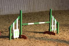 a green and white agility jump - stock photo