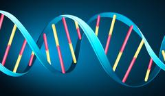 DNA - stock illustration