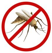 Mosquito - stock illustration