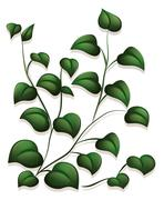 Leaves Stock Illustration