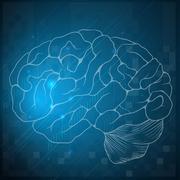 Sketch of a human brain Stock Illustration