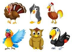 Stock Illustration of Different kind of birds