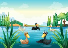 Stock Illustration of A group of aquatic birds at the pond
