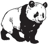 Panda black and white Stock Illustration