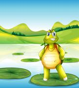 A turtle at the pond standing above a waterlily Stock Illustration