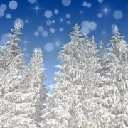 Christmas background with snow covered fir tress Stock Illustration