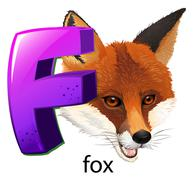 A letter F for fox Piirros
