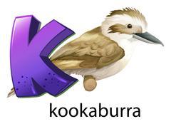 A letter K for kookaburra Stock Illustration