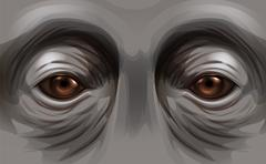 Eyes of an orangutan Stock Illustration