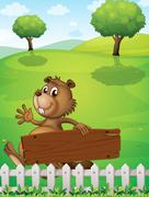A playful beaver near the fence with an empty signboard - stock illustration