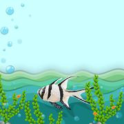 Stock Illustration of A fish under the sea