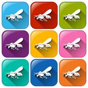 Insect icons Stock Illustration