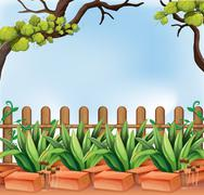 A backyard with a fence - stock illustration