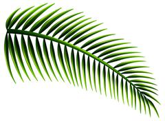 Palm leaves - stock illustration