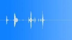 Splat_Flesh_Blood Sound Effect