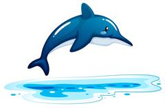 A dolphin - stock illustration