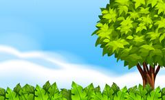Stock Illustration of A summer scenery with green plants