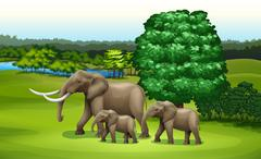 Elephants and the green plants Piirros
