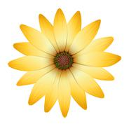 Stock Illustration of A flower with orange petals