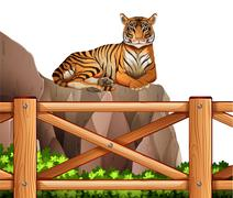 A tiger above the cliff - stock illustration
