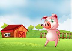A pig at the farm pointing the barn house Stock Illustration