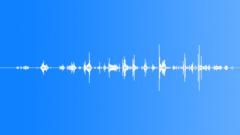 Splat_Flesh_Blood_03 Sound Effect