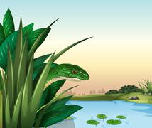 A green snake at the pond - stock illustration