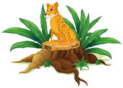 Stock Illustration of A trunk with a cheetah