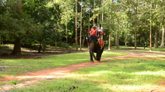 Elephant Walks past giving rides to Tourists  - Angkor Wat Stock Footage