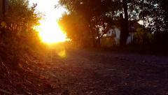 Country road at sunset Stock Footage