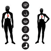 Medical Human body part icon Stock Illustration