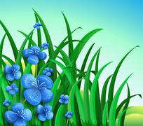 A garden in the hill with blue flowers Stock Illustration