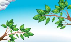 Stock Illustration of The green leaves and the clear blue sky