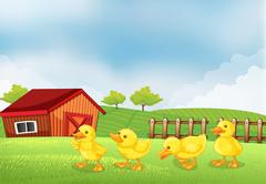 Four chicks in the farm with a barn and a wooden fence Stock Illustration