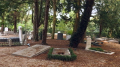 Old graves in a circle under trees Stock Footage