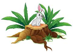 A bunny above a trunk - stock illustration