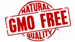Rubber Stamp GMO Free Natural Quality - stock footage