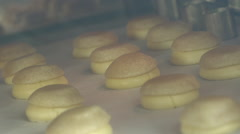 Choux pastry baking oven timelapse Stock Footage